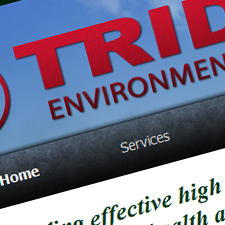 Trident Environmental Group